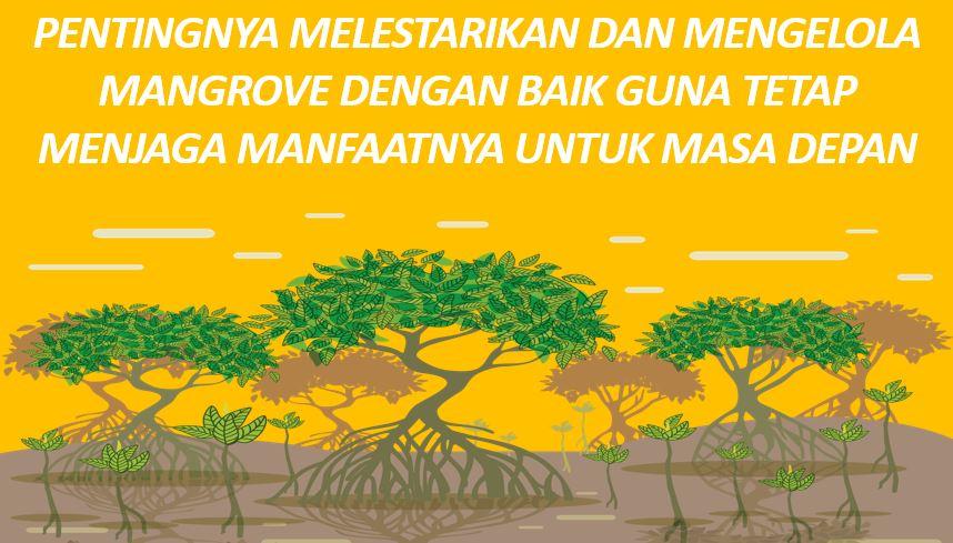 Pentingnya Melestarikan dan Mengelola Mangrove Dengan Baik Guna Tetap Menjaga Manfaatnya Untuk Masa Depan
